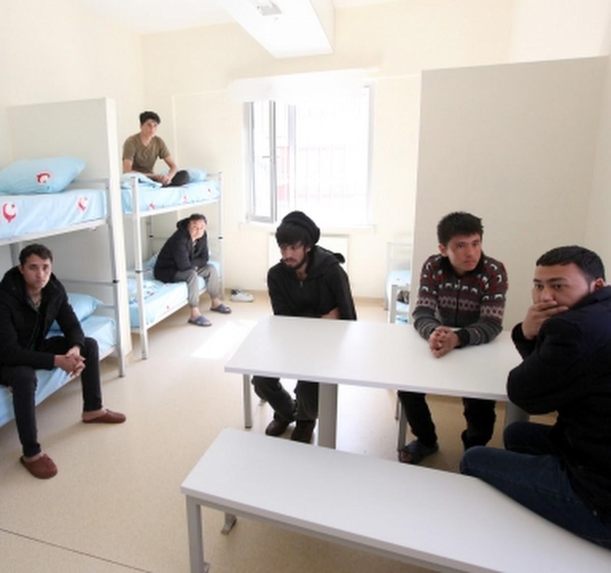 Erzurum Removal Center - (c) Šhâhžãîb S R 2019